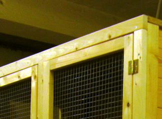 Hasenstall Dach Innenbereich