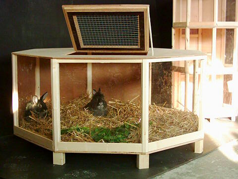 Hasenstall Kaninchenstall Kaninchenställe Hasenställe